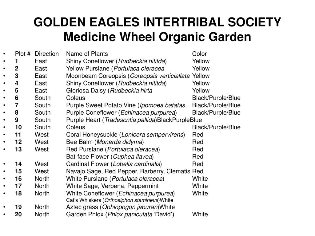 GOLDEN EAGLES INTERTRIBAL SOCIETY