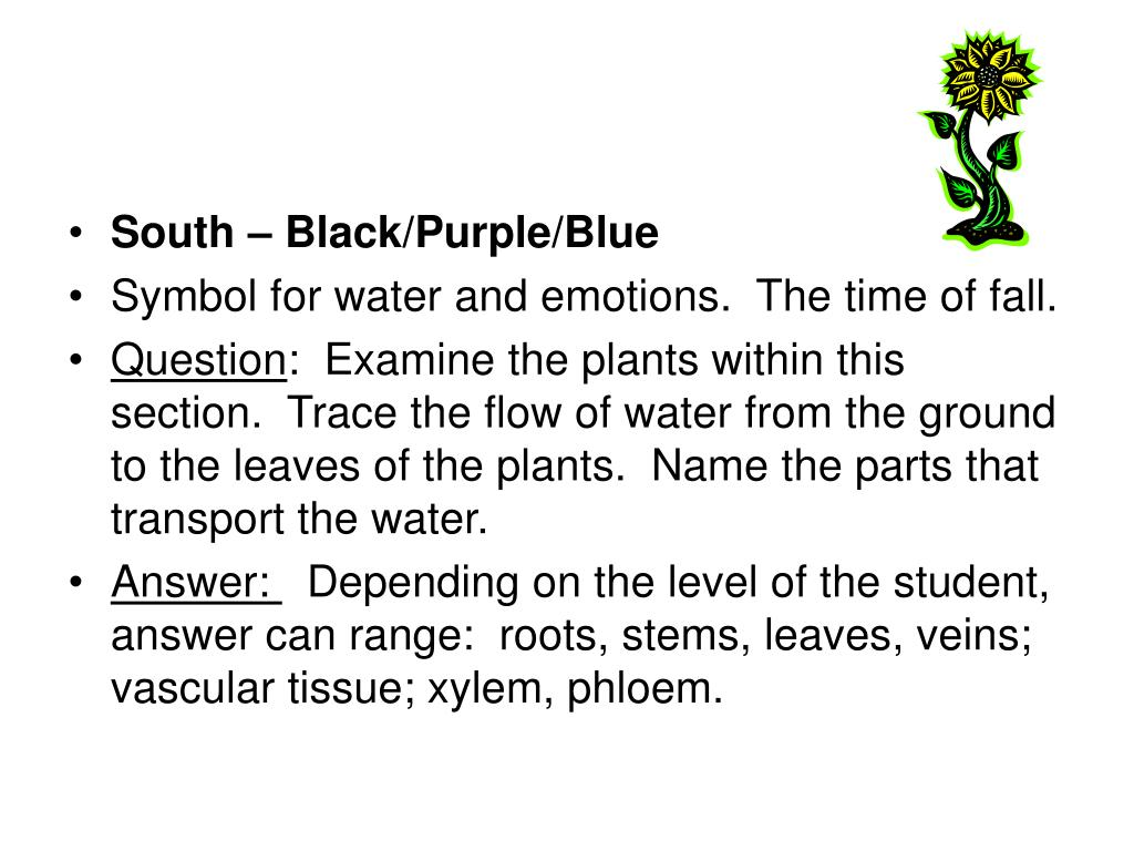 South – Black/Purple/Blue