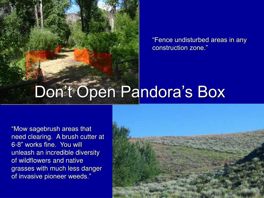Don't Open Pandora's Box