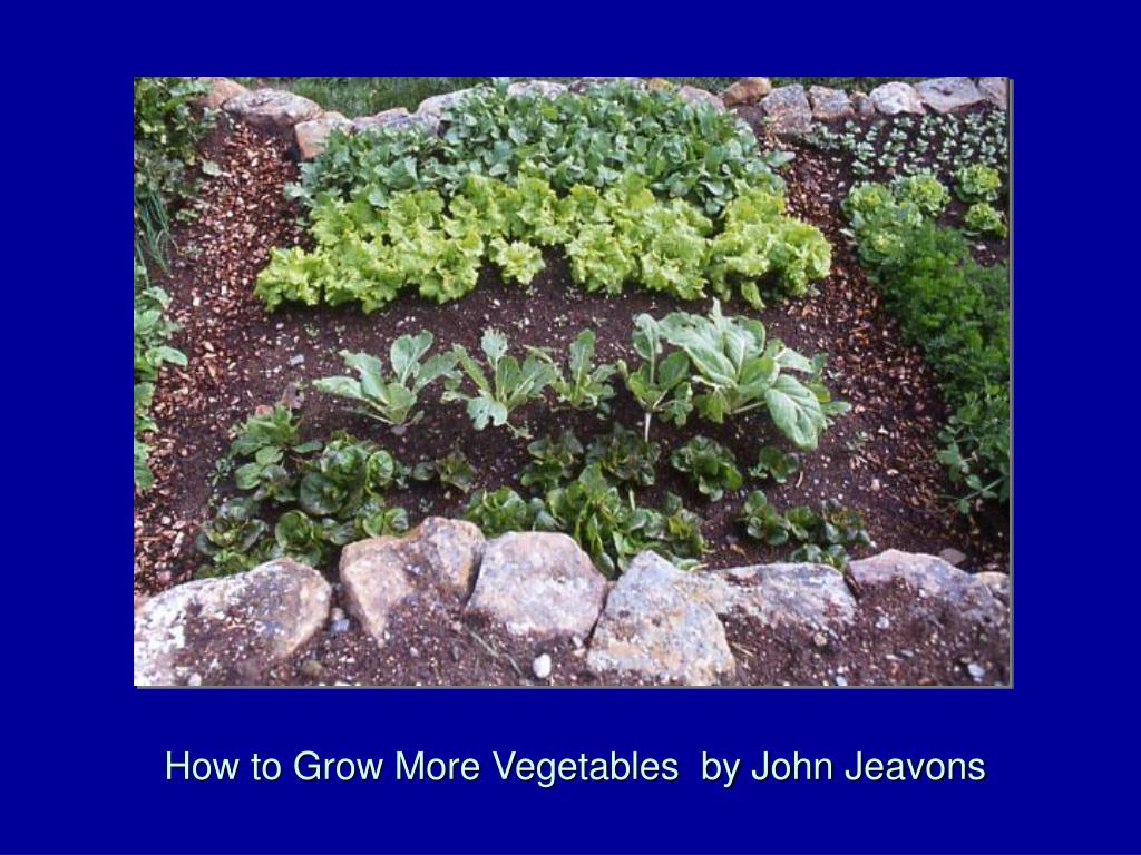 How to Grow More Vegetables  by John Jeavons