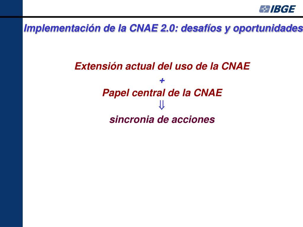 Implementación de la CNAE 2.0: desafíos y oportunidades
