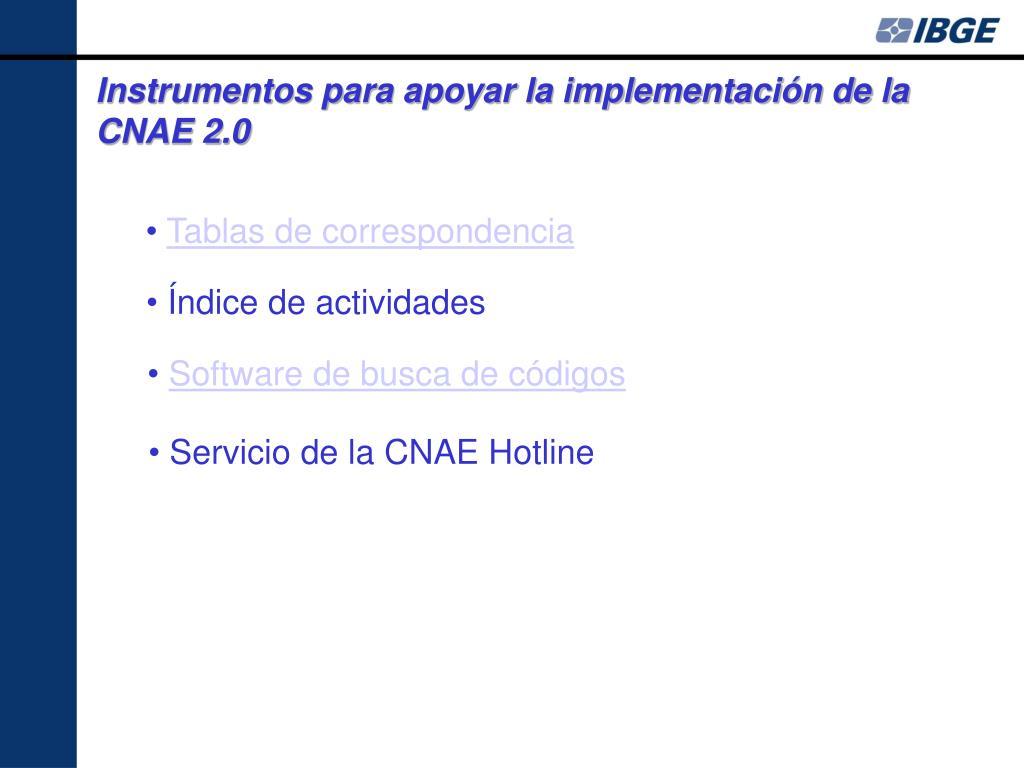 Instrumentos para apoyar la implementación de la CNAE 2.0