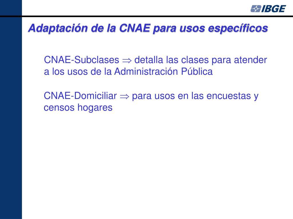 Adaptación de la CNAE para usos específicos