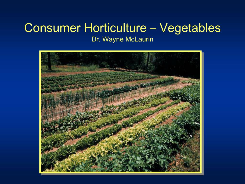 Consumer Horticulture – Vegetables