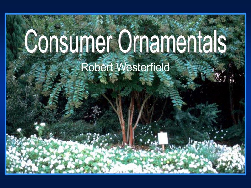 Consumer Ornamentals