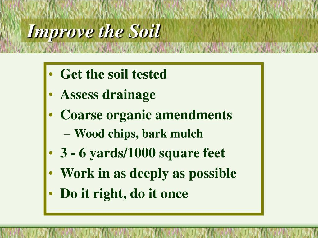 Improve the Soil