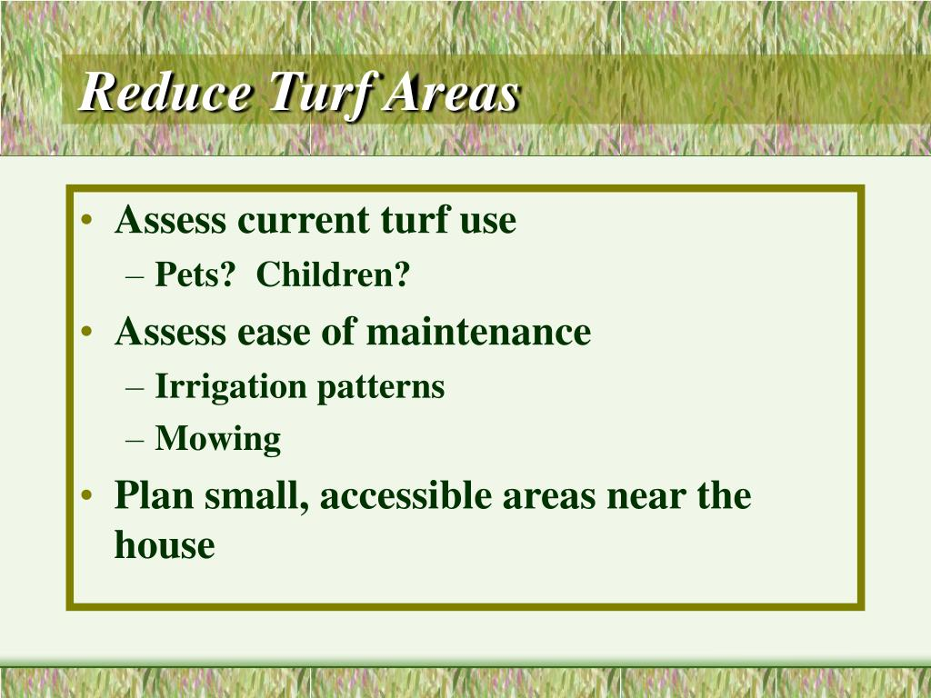 Reduce Turf Areas