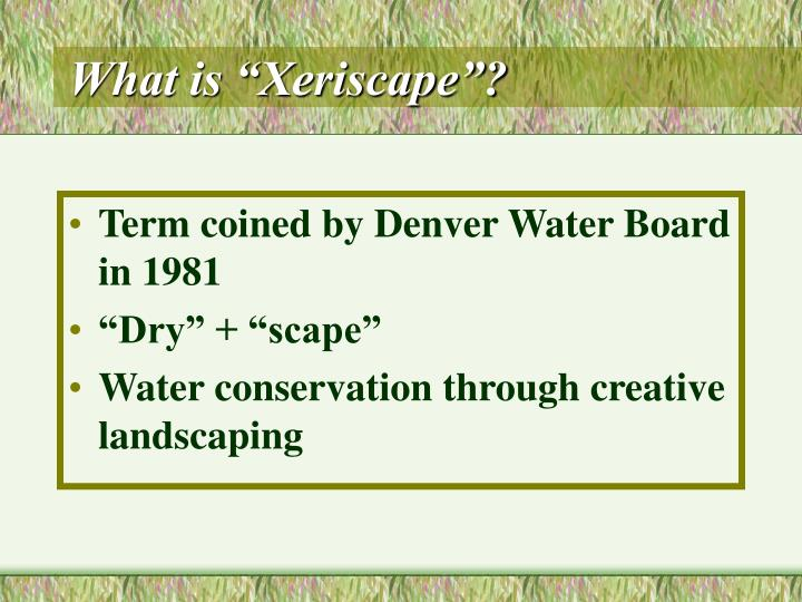 What is xeriscape