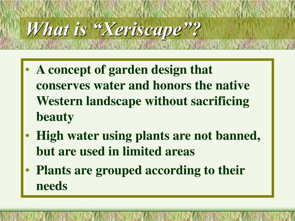 "What is ""Xeriscape""?"