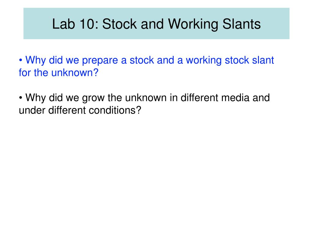 Lab 10: Stock and Working Slants