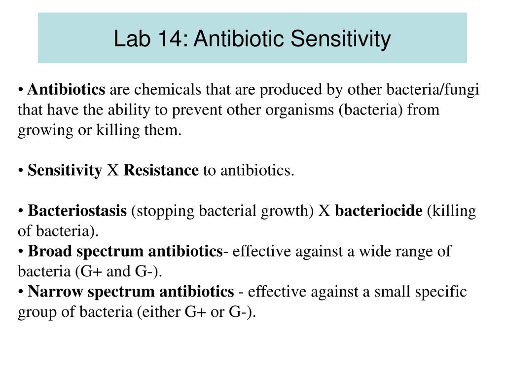 Lab 14: Antibiotic Sensitivity