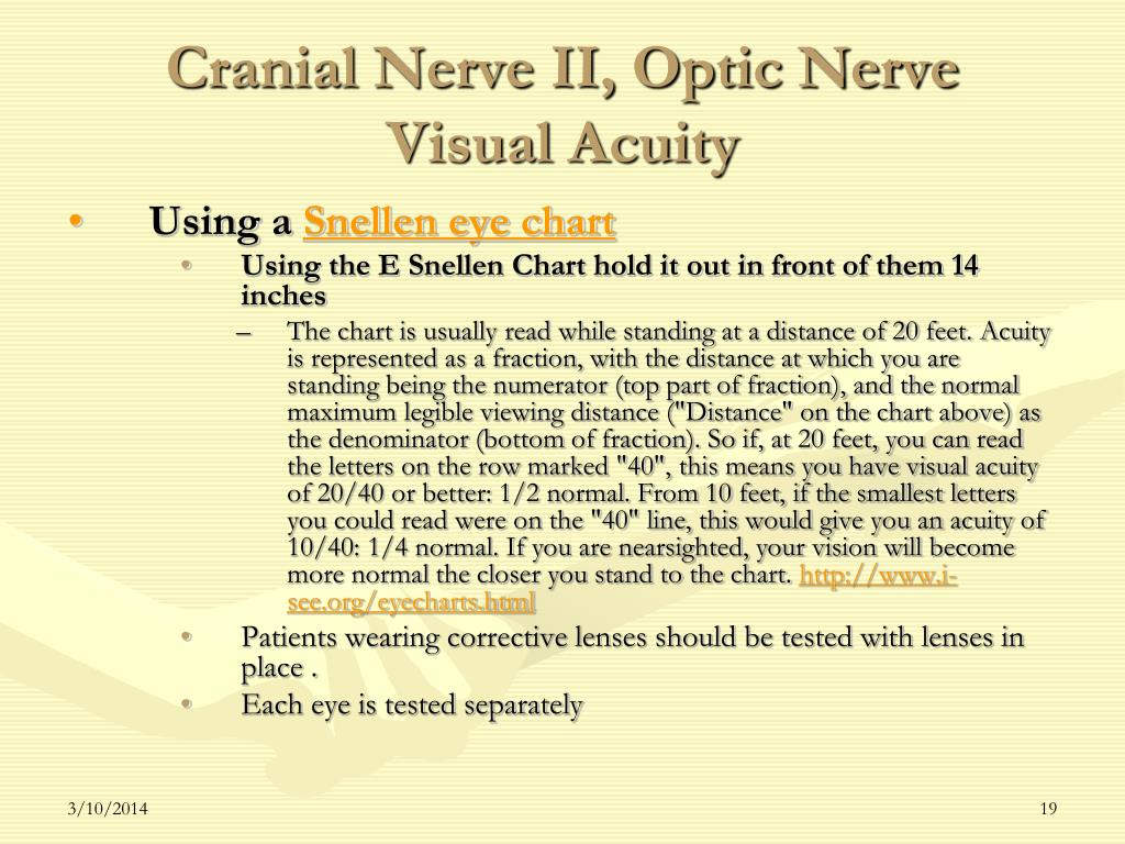 Cranial Nerve II, Optic Nerve