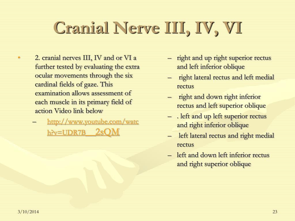 Cranial Nerve III, IV, VI