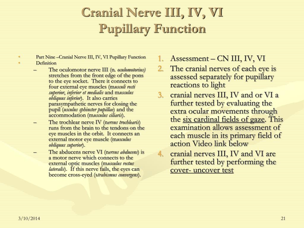 Part Nine –Cranial Nerve III, IV, VI Pupillary Function