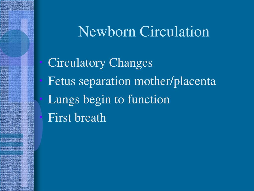 Newborn Circulation