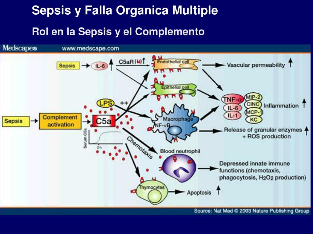 Sepsis y Falla Organica Multiple
