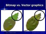 bitmap vs vector graphics27