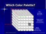 which color palette