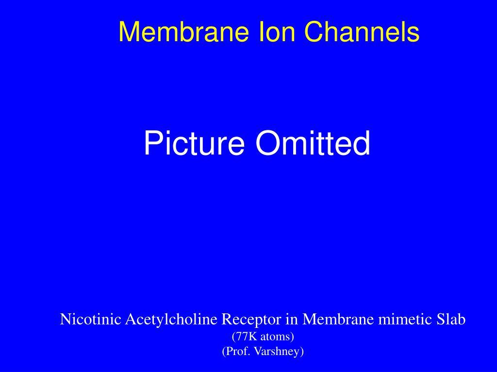 Membrane Ion Channels
