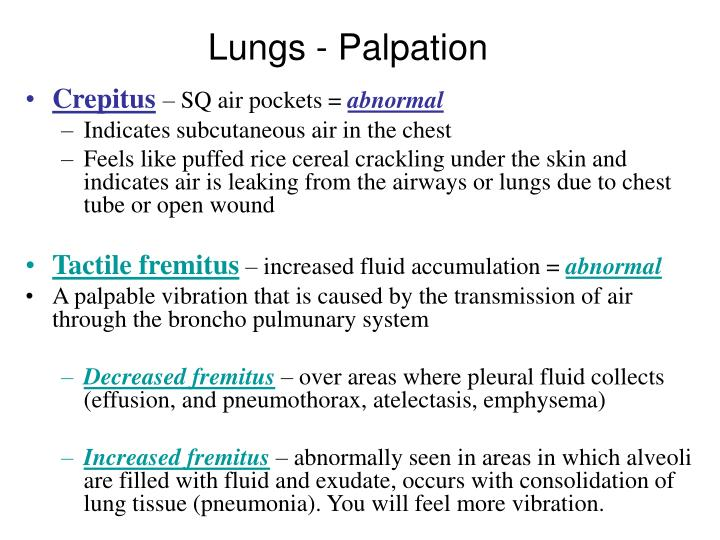 Lungs - Palpation