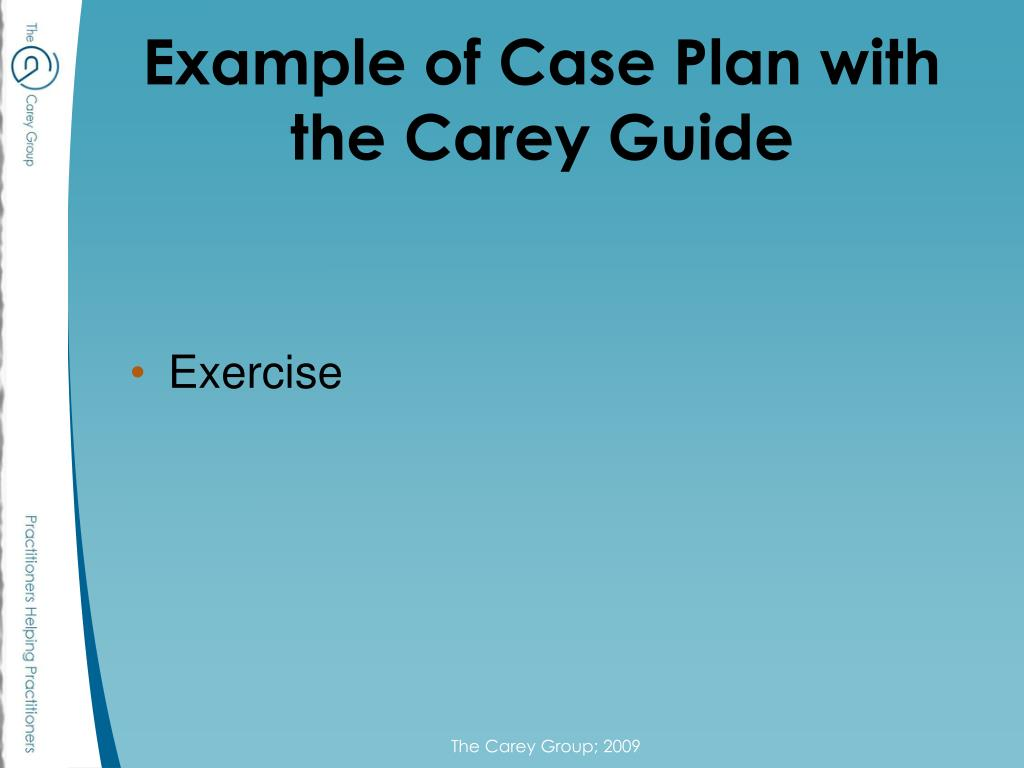 Example of Case Plan with the Carey Guide