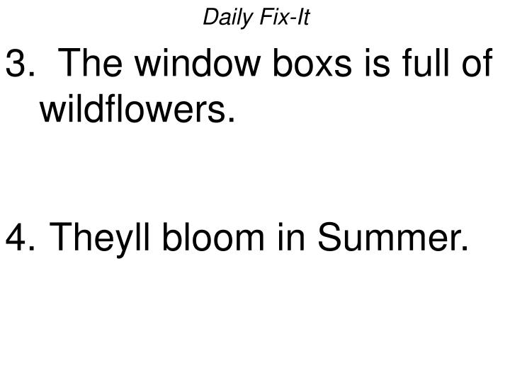 Daily fix it 3 the window boxs is full of wildflowers theyll bloom in summer