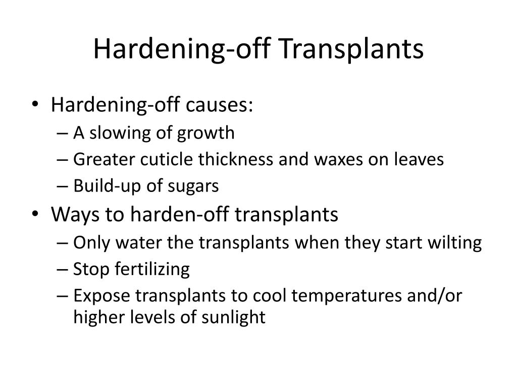 Hardening-off Transplants