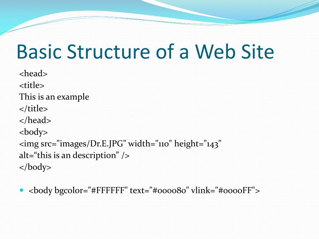 Basic Structure of a Web Site