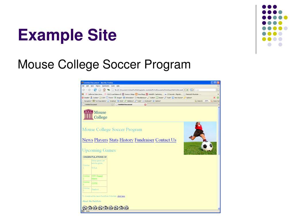 Example Site