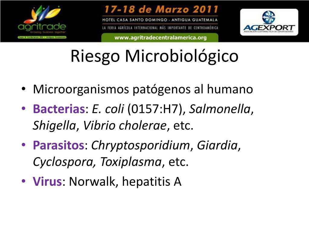 Riesgo Microbiológico