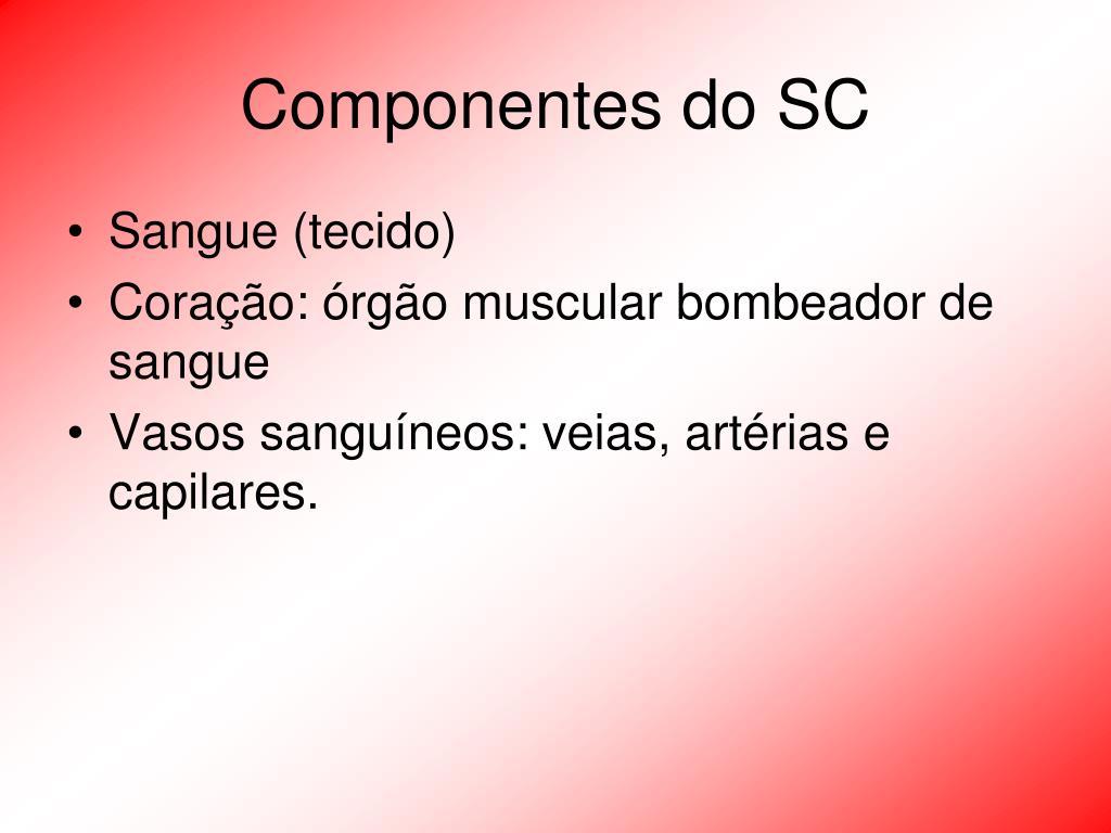 Componentes do SC