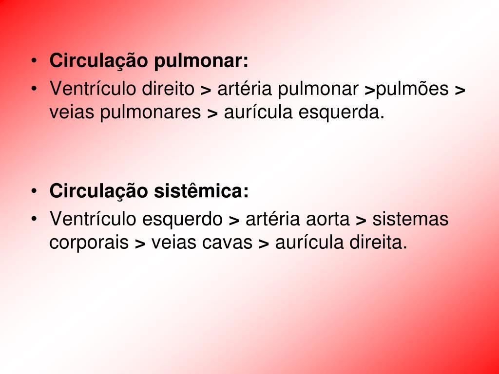 Circulação pulmonar:
