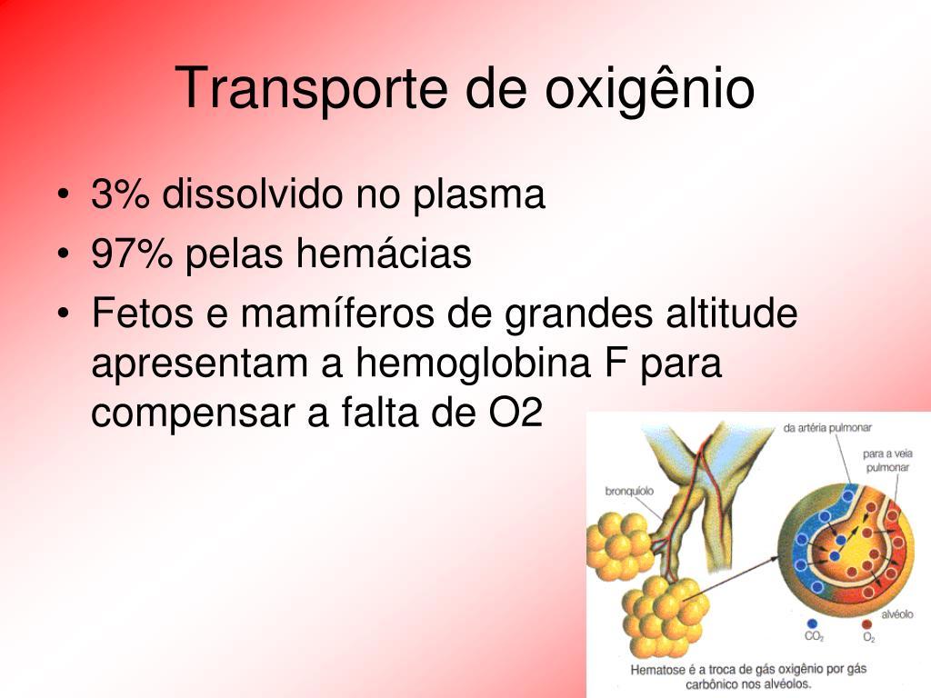 Transporte de oxigênio