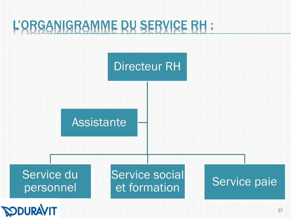L'organigramme du service RH :