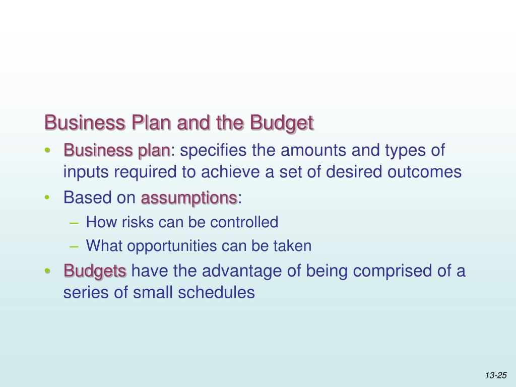 Business Plan and the Budget