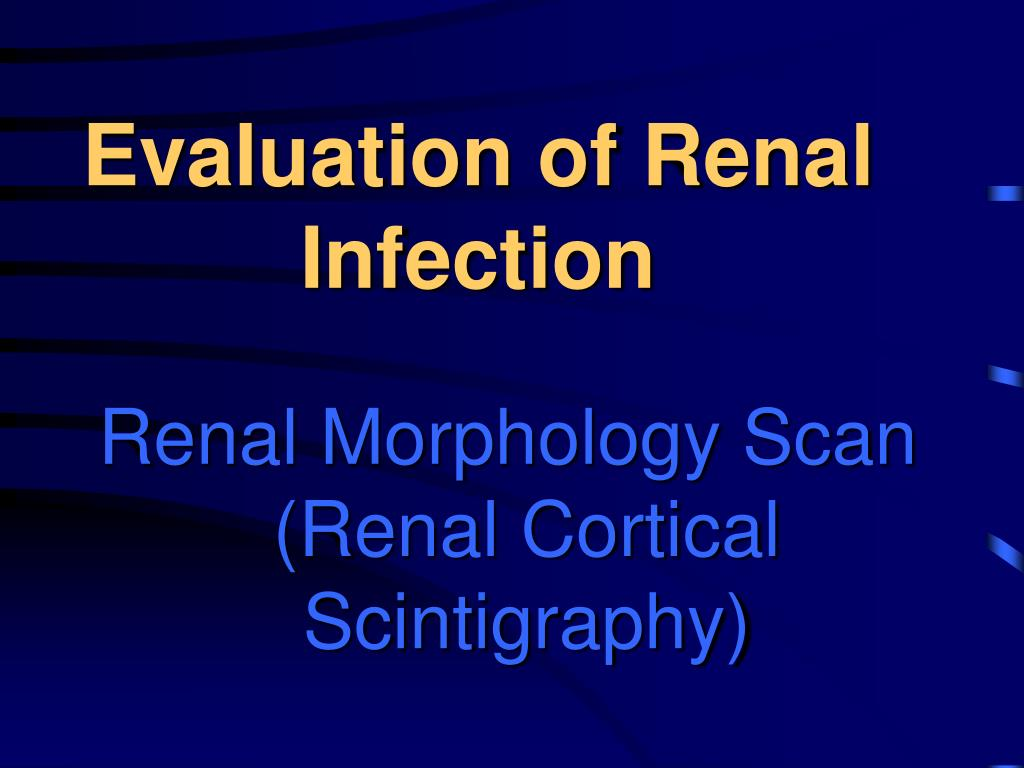Evaluation of Renal Infection