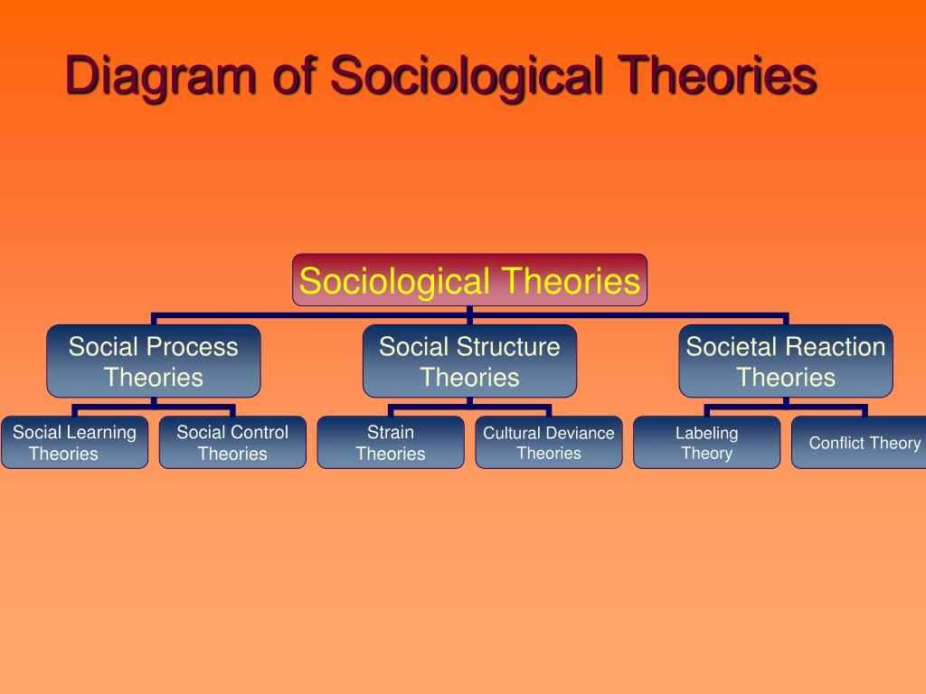 sociological theories of crime pdf