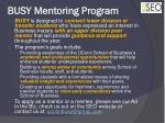 busy mentoring program