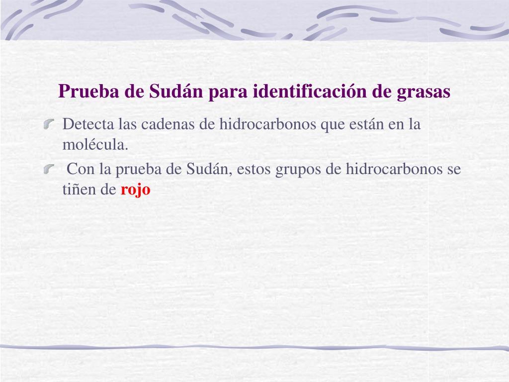 Prueba de Sudán para identificación de grasas