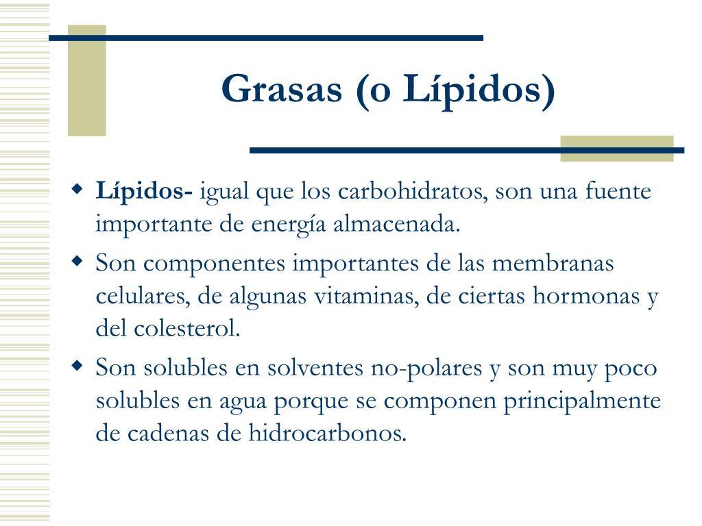 Grasas (o Lípidos)
