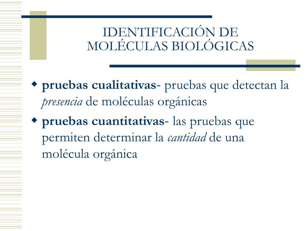 IDENTIFICACIÓN DE