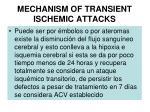 mechanism of transient ischemic attacks