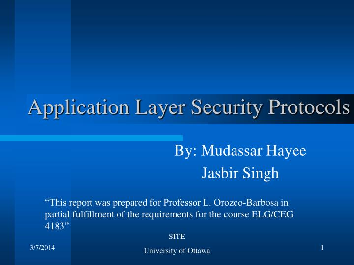 Application layer security protocols