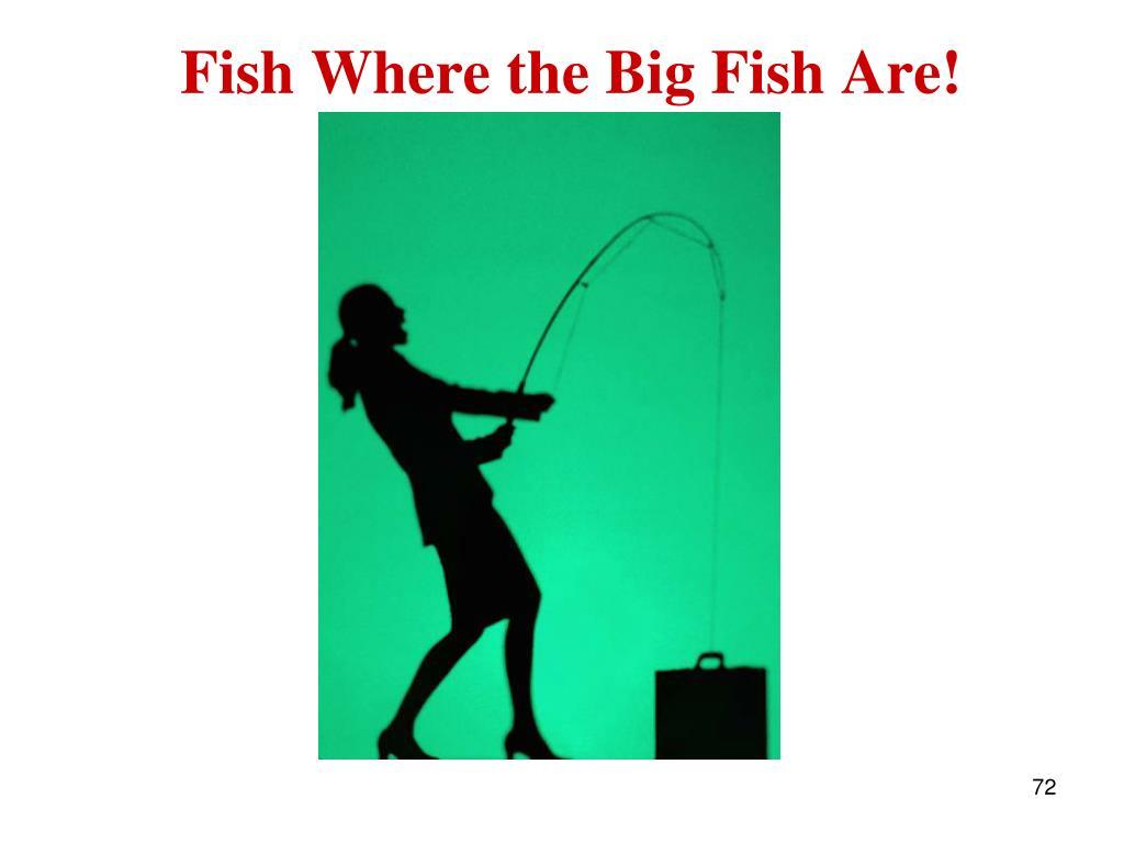 Fish Where the Big Fish Are!