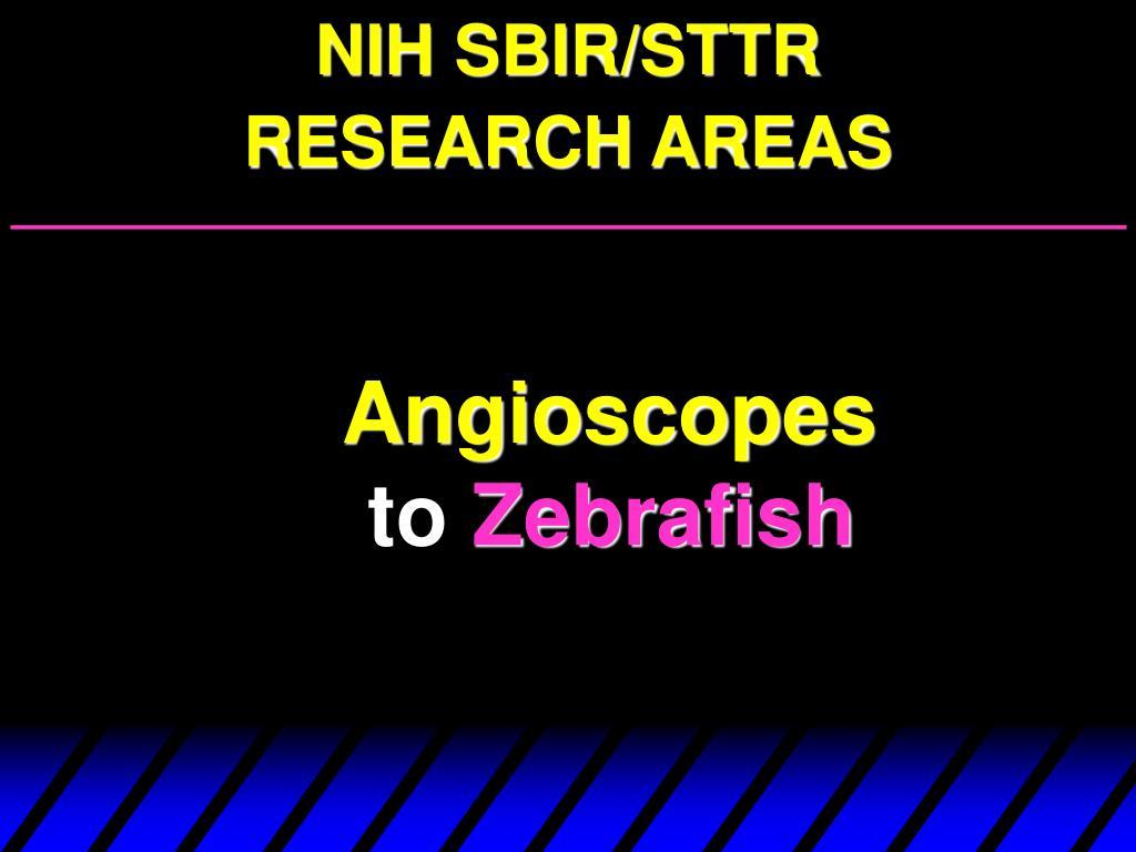 NIH SBIR/STTR