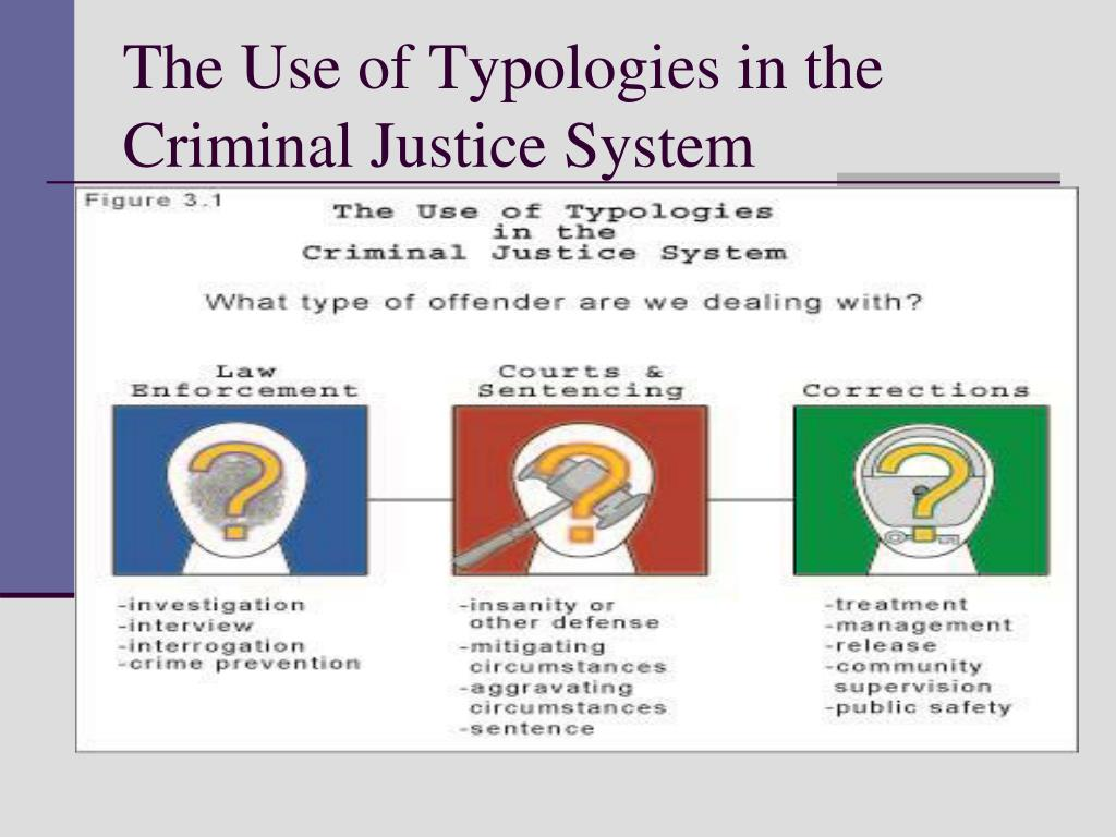 The Use of Typologies in the Criminal Justice System