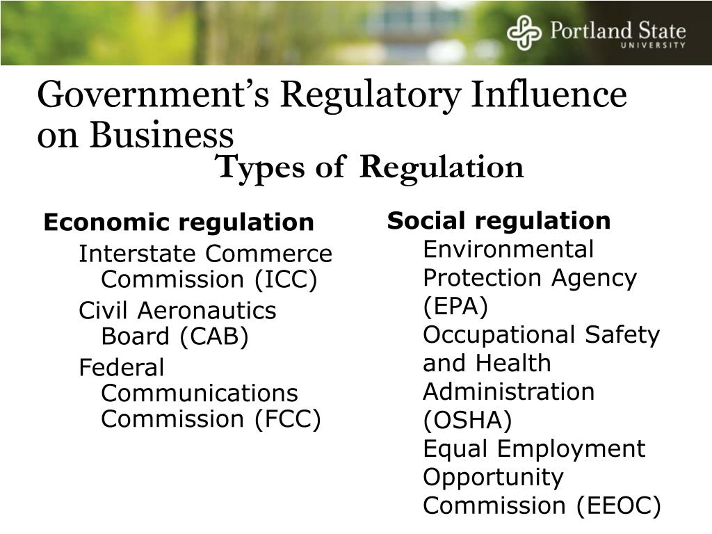 Government's Regulatory Influence on Business