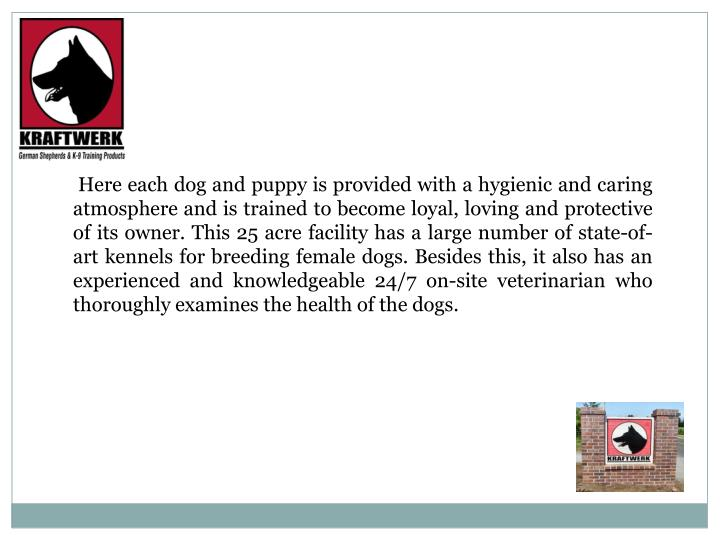 Here each dog and puppy is provided with a hygienic and caring atmosphere and is trained to become ...