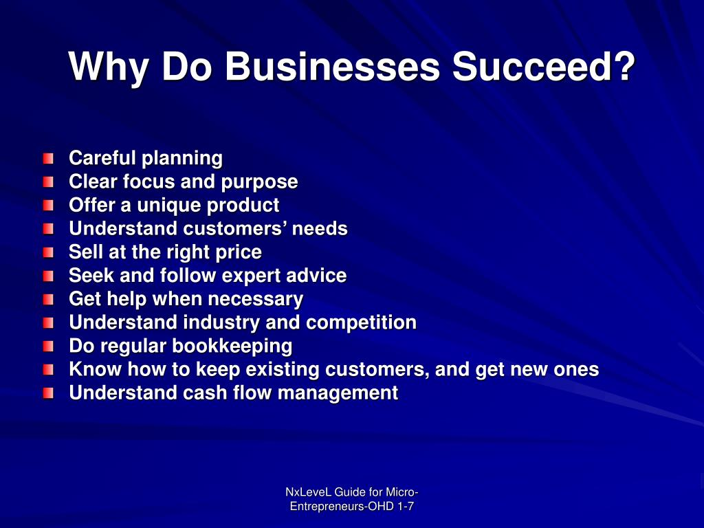 Why Do Businesses Succeed?