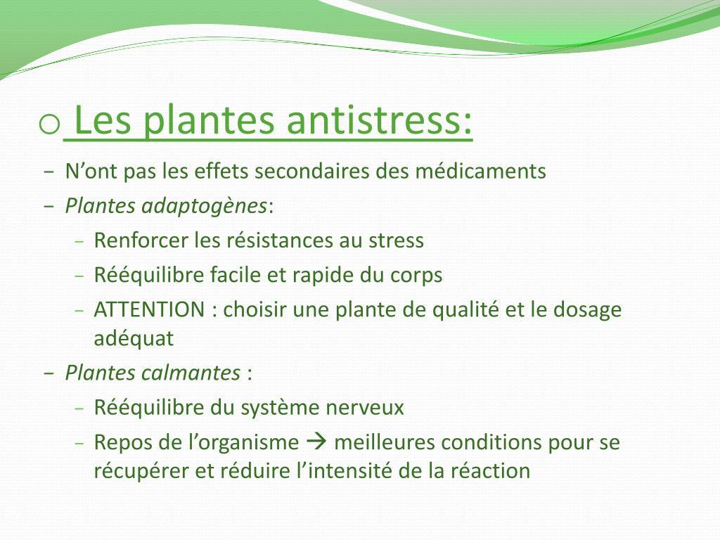 Les plantes antistress: